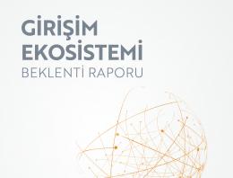 Girişim Ekosistemi Beklenti Raporu